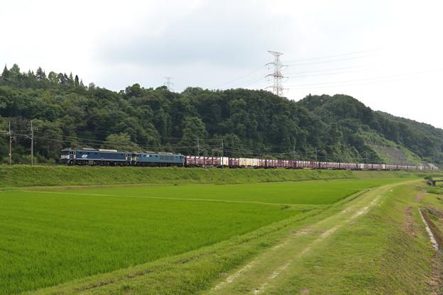 Photos: 武並 81レ