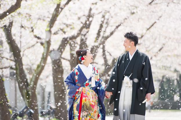 Photos: 春風に舞う