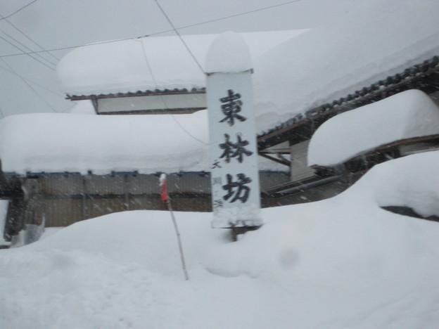2011冬の旅 009