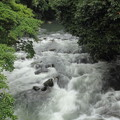 Photos: 梅雨の川の流れ