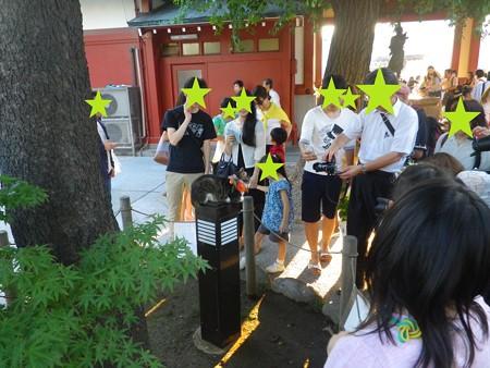 浅草ほおずき市2015 ほおずきにゃんこギャラリー