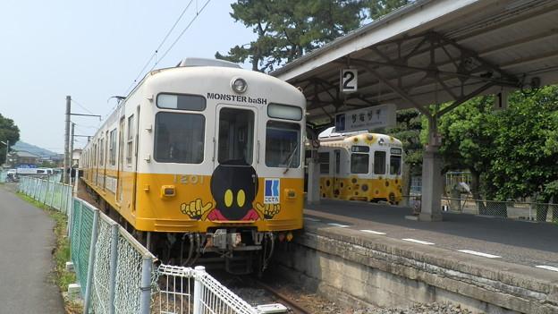 P8051256
