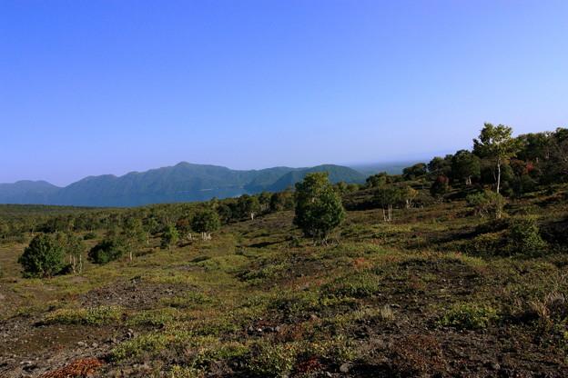 写真: 秋の樽前山のふもと