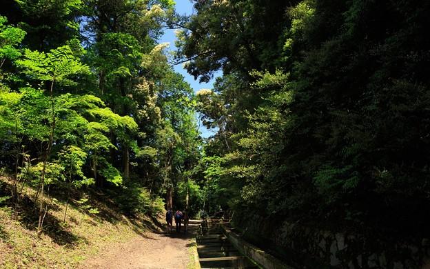琵琶湖疎水(蹴上~南禅寺)32