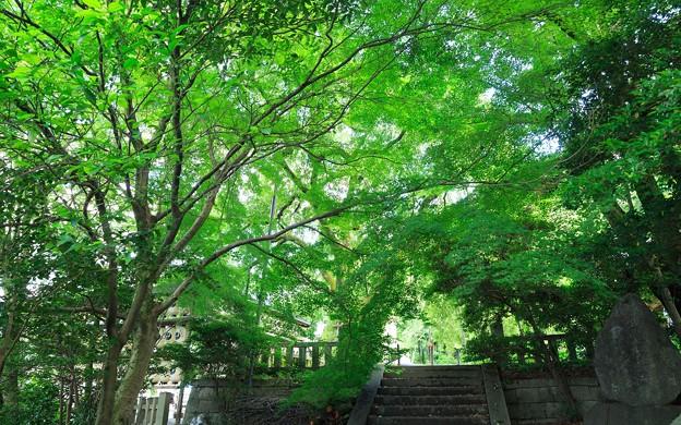 大石神社15