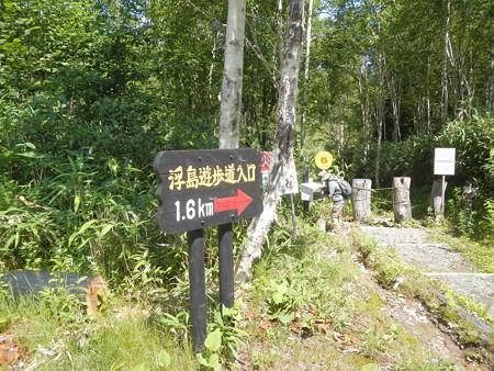 浮島湿原へ行く遊歩道入口2