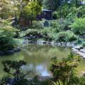 Photos: ハワイ王国公使別邸庭 (2)