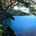Photos: 榛名湖(4)