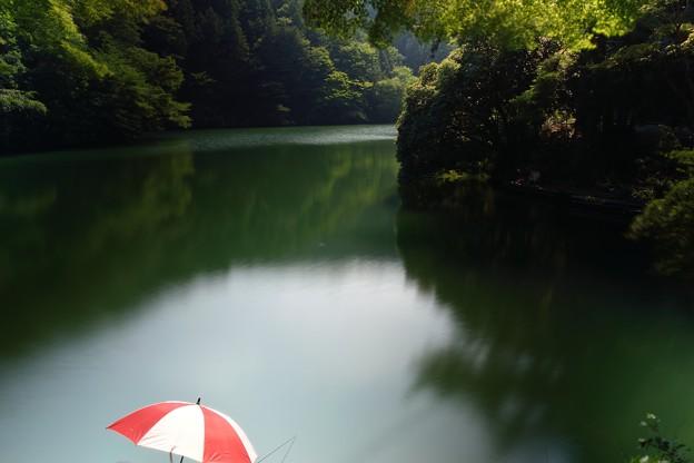 鎌北湖(6)