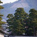京都御苑から眺める大文字