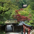 Photos: 新緑の那谷寺。