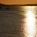 Photos: Potts Harbor in Golden