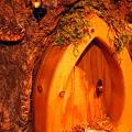 写真: Gnome's House