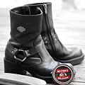 「第34回モノコン」Shoeshine_Kiwi