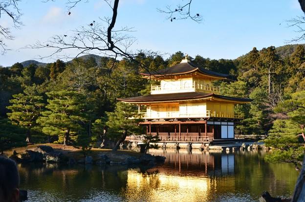 写真: 金閣寺