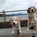 久しぶりに海の公園に行ってきたよ!(マリうみ大はしゃぎ!)