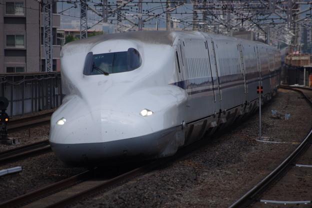 IMGP0102