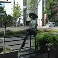 Photos: 渚 淀井敏夫作