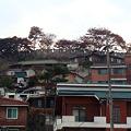 Photos: 城北洞