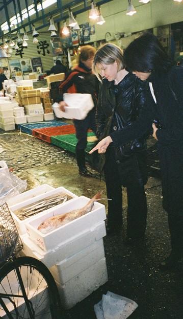 Fish Market@Tsukiji