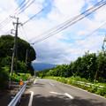 写真: 県立谷戸山公園脇
