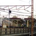 Photos: 桜木町