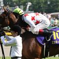 写真: ミッキークイーン  ウイニングラン_5(第76回 優駿牝馬)