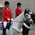 写真: 東京競馬場 誘導馬_3(15/05/09)