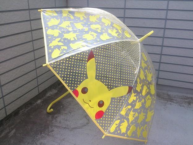 傘 ポケモン/ピカチュウ