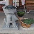 Photos: s0269_津山観光センターのかっぱ像