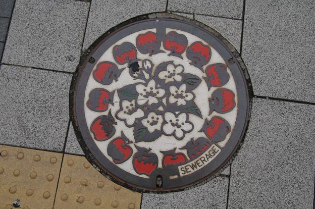 s2472_長野市マンホール_りんご柄