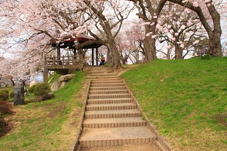 日本のさくら名所百選 烏帽子山公園