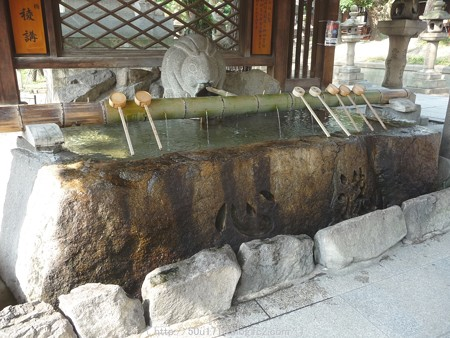 150615-住吉大社 (7)