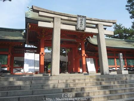 150615-住吉大社 (8)