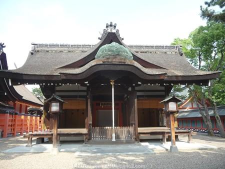 150615-住吉大社 (20)