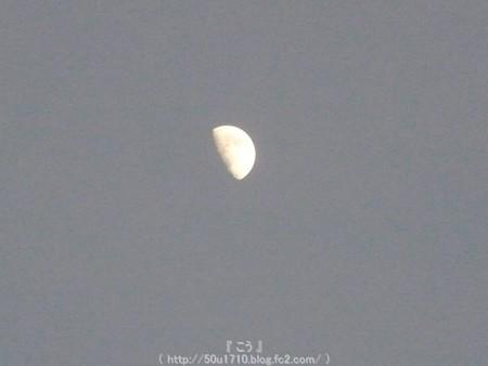 150725-お月さん (4)