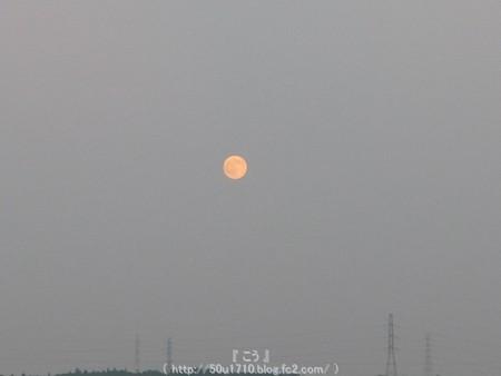 150731-お月さん (4)