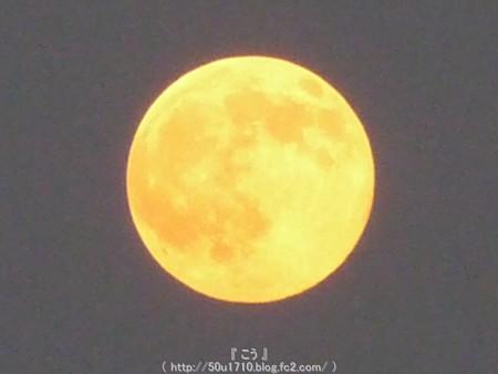 150731-お月さん (20)