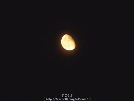 150804-お月さん (1)