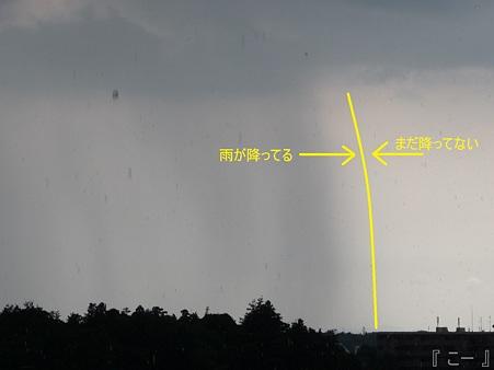 110803-ゲリラ豪雨 (2)改