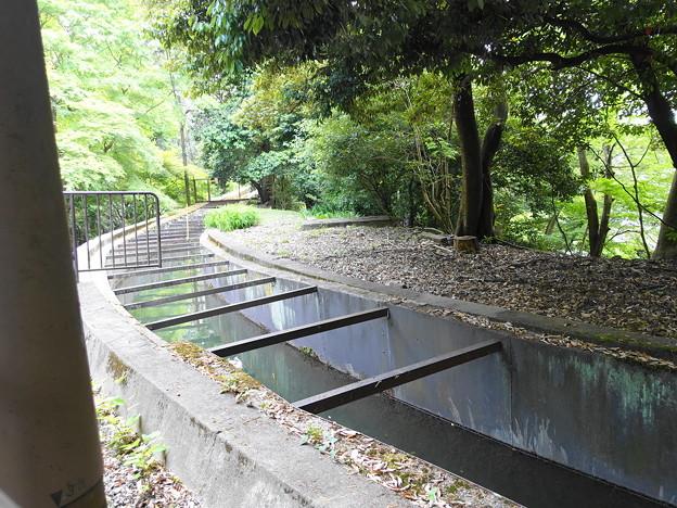 水路閣の上部には今も水が流れています  (1)