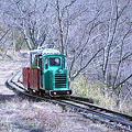 写真: シグナス森林鉄道