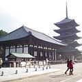 写真: 興福寺東金堂と五重塔20111229