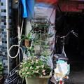 尾道05 - 元宋の赤