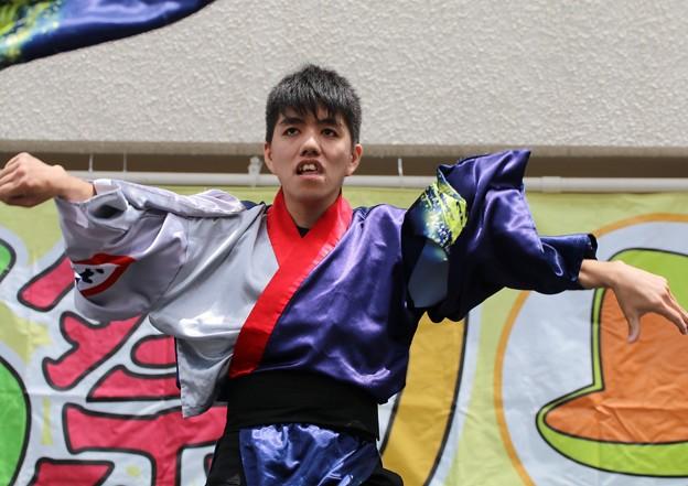 かえる 蒼06