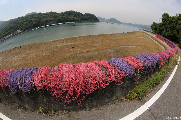 瀬戸の漁網1