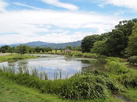 八幡原史跡公園 (2)