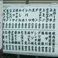 Photos: 板