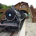 観光用SL型列車 SL at Gajeong Station