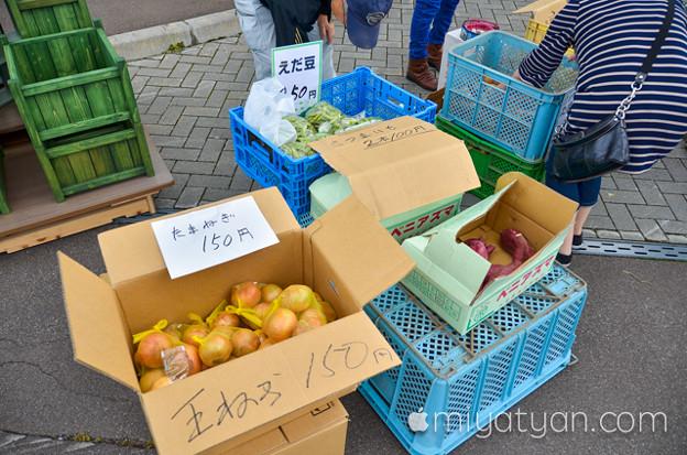 Photos: DSC_3666